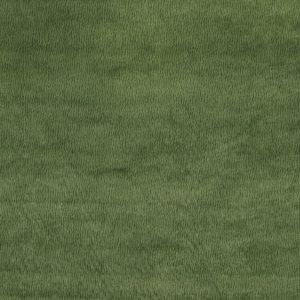 Nina Campbell Poquelin Bejart NCF4314-04