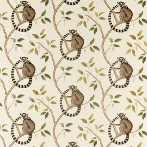 Sanderson Glasshouse Ringtailed Lemur 226581