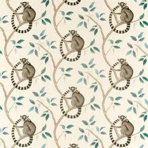 Sanderson Glasshouse Ringtailed Lemur 226582