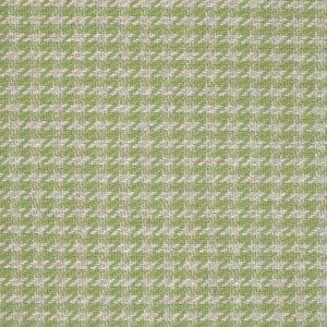 Sanderson Chika Weaves Georgie 233556 Apple Fabric