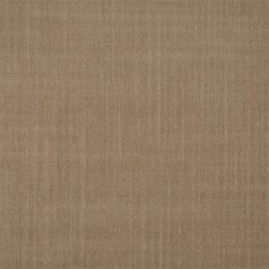 Birodo Fabric 332425 by Zoffany