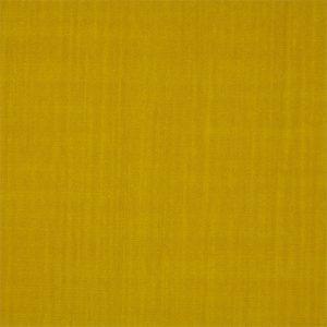 Birodo Fabric 332427 by Zoffany